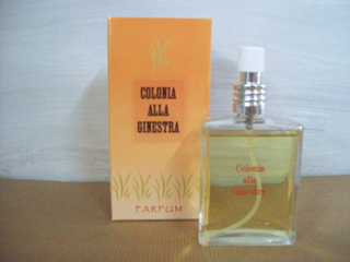 COLONIA ALLA GINESTRA ml. 50